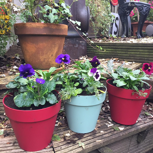 Winter gift pots6.JPG
