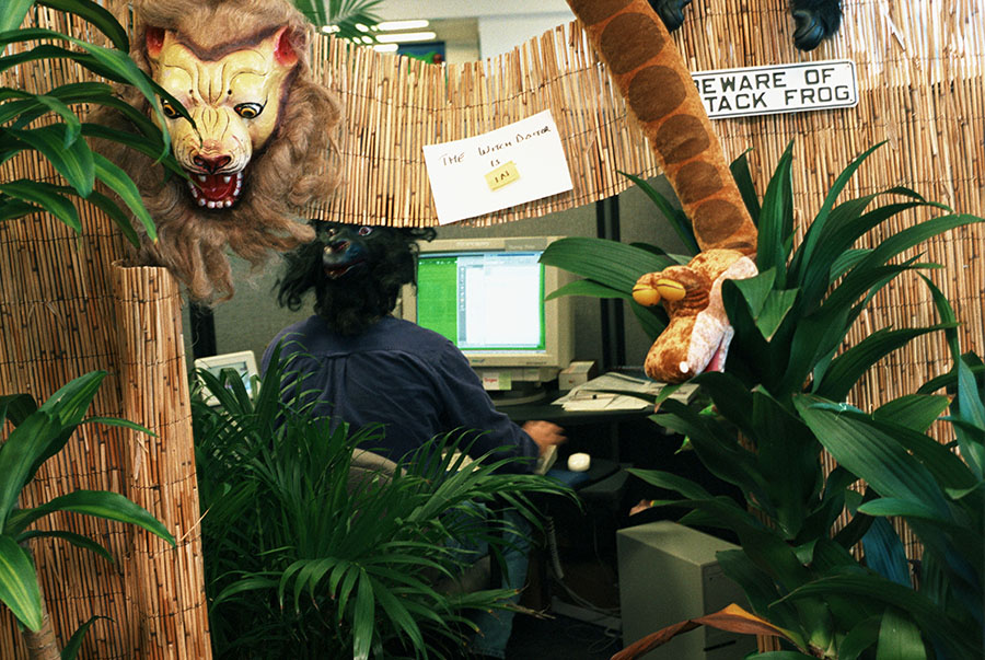 Cubicle culture at Junglee's offices back in 1997. Rakesh Mathur who founded the successful virtual database company Junglee in 1996 - which was sold to Amazon for $200m just two years later.