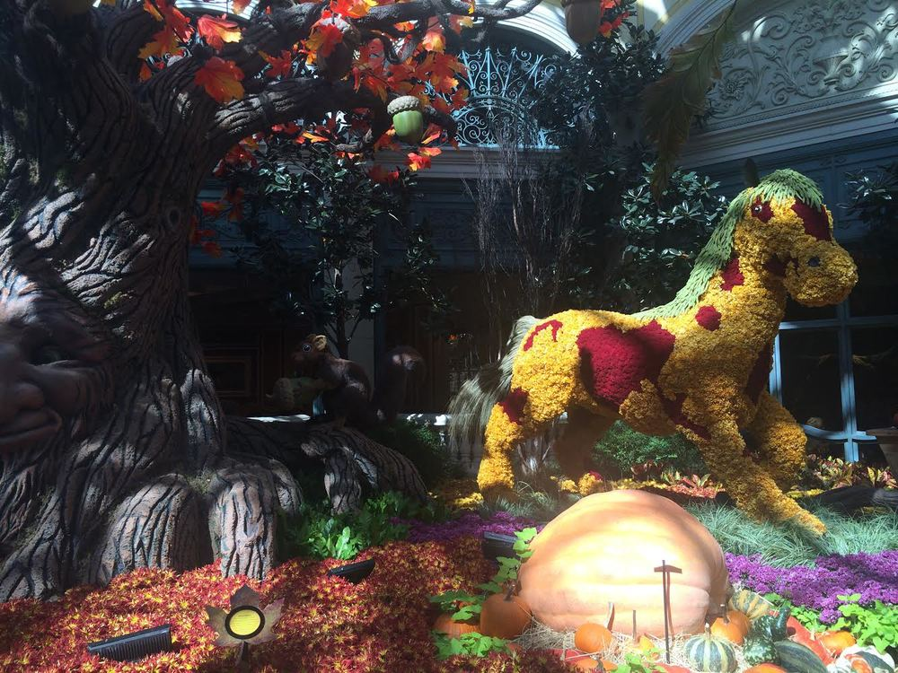 This fall display at the Bellagio was amazing.