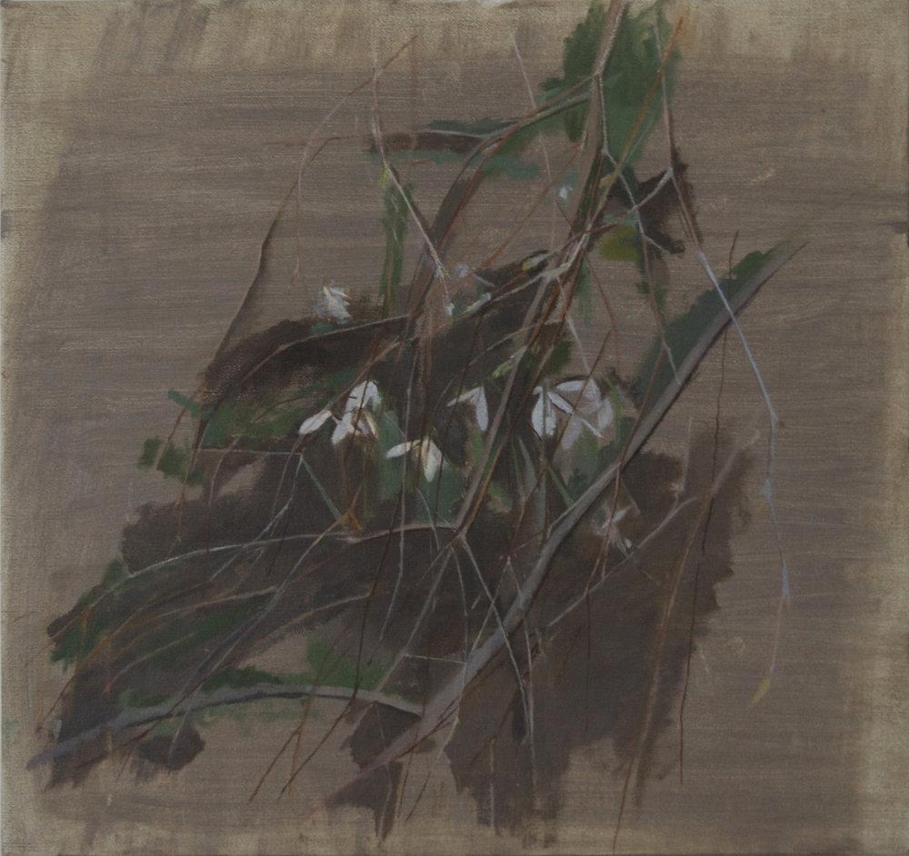 </strong><em>Winter Ending</em> <br/> 2015<br/> oil on canvas<br/>49 x 52cm<strong>