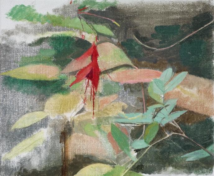 </strong><em>Fuchsia</em> <br/>2015<br/>oil on canvas<br/>26 x 31cm<strong>