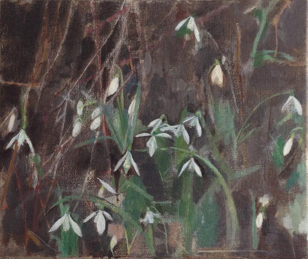 </strong><em>Under the Birch</em> <br/> 2012-13 <br/>oil on canvas<br/>25 x 30cm <strong>