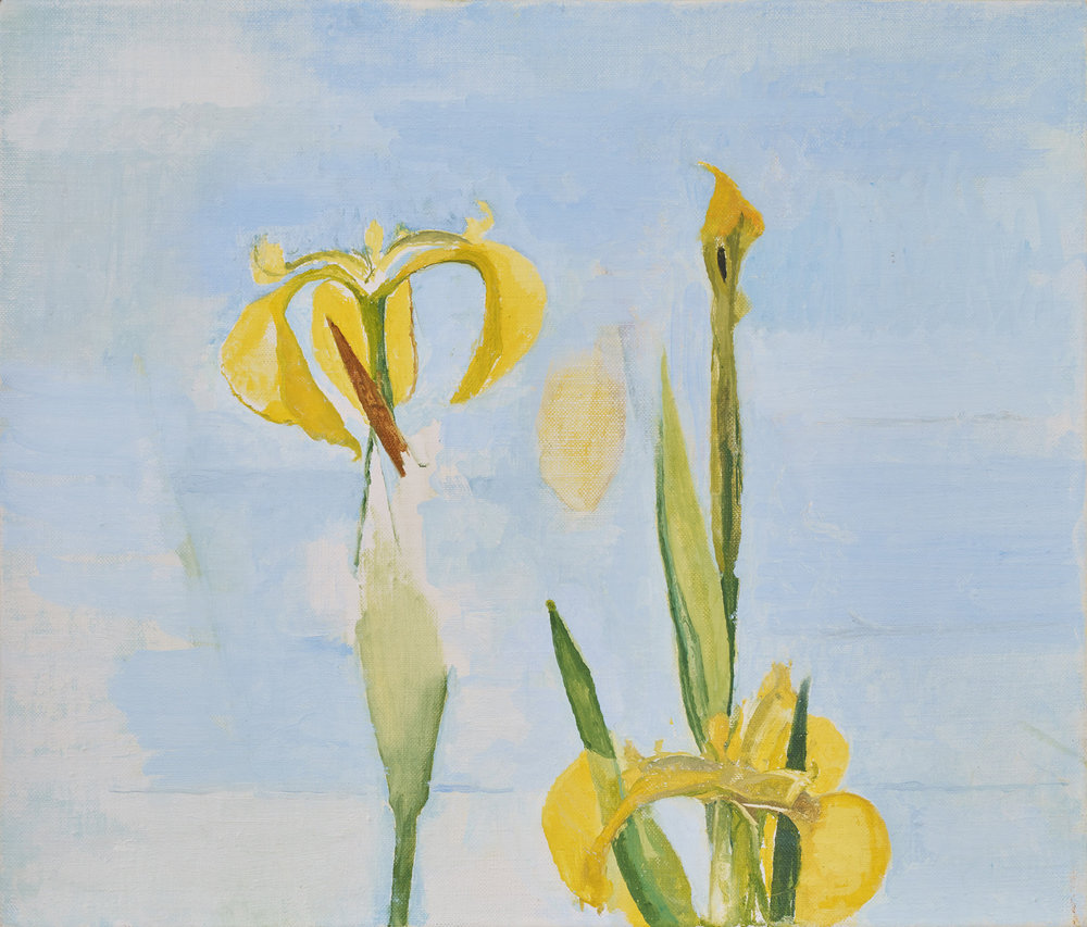 </strong><em>A May Day, Yellow Flag</em> <br/> 2017<br/>oil on canvas<br/> 30 x 35cm<strong>