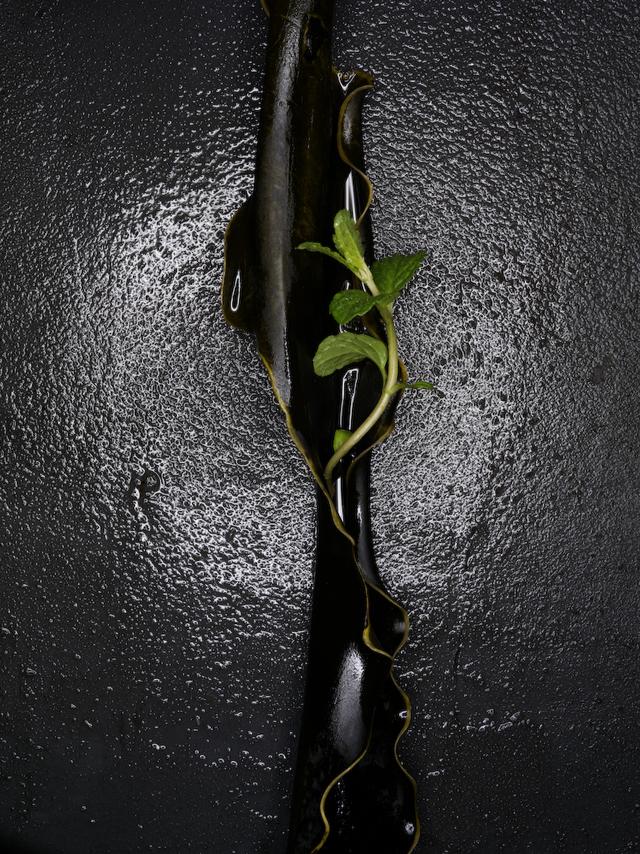 dm-still-life-018.jpg