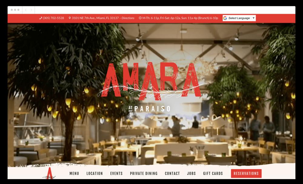 amara-website-intro-compressed.png