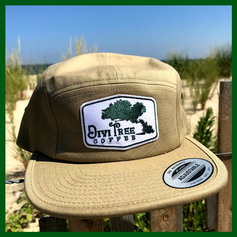 4b8acbc3654 5 Panel Duckbill Cap — Divi Tree Coffee