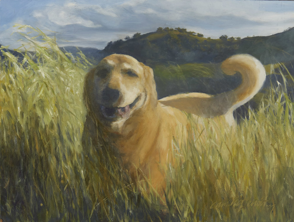 """""""Fred Dog"""" 18 x 20"""" (2011)   Fred pictured here loved to run in the foothills of Mount Diablo near his home in Walnut Creek, CA"""