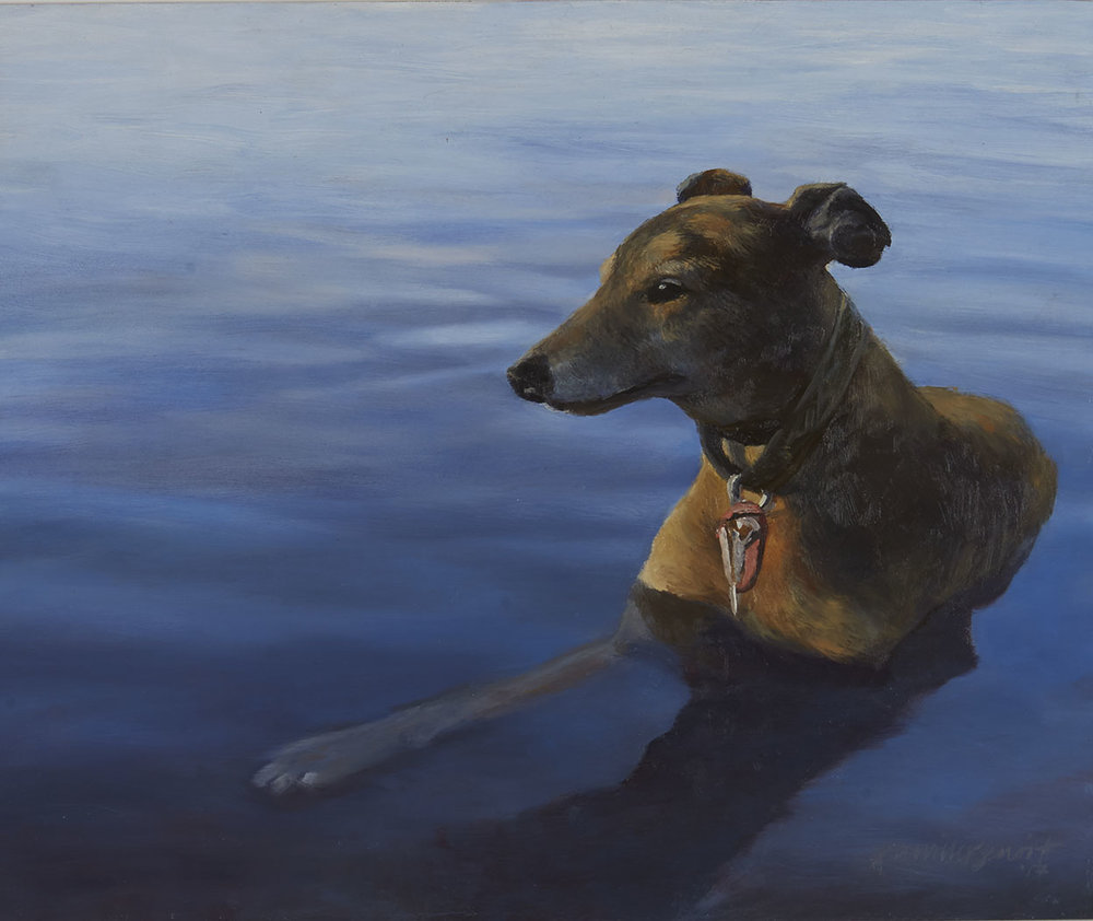 """""""Leo"""" 18"""" x 20"""" (2016)   Leo is a Greyhound rescue who absolutely loves to take frequent summer """"dips"""" in nearby Lake Harriet."""