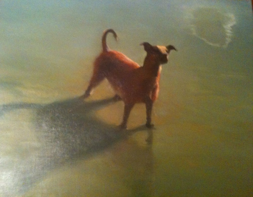 """""""Dog and Cloud Reflection"""" 18"""" x 20"""" (2011)"""