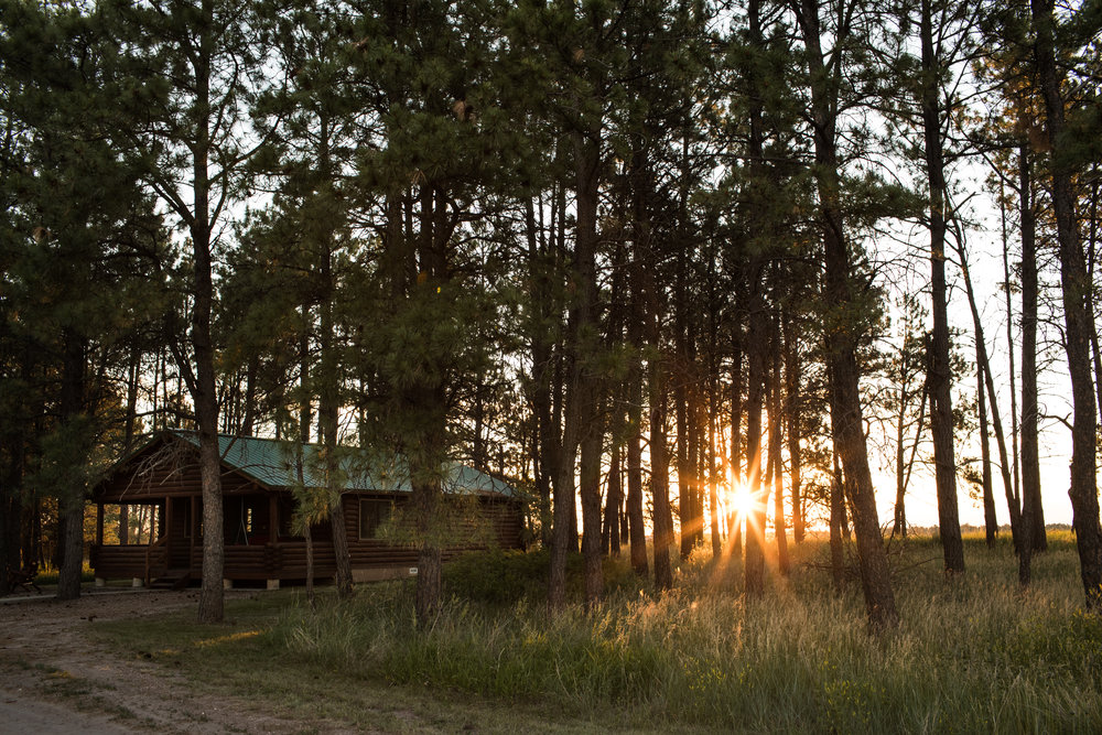 Sunrise through the pines at the Evergreen Cabin. The Spruce and Evergreen cabins are pretty close to identical in size and design and are conveniently located about 100 yards apart from each other.