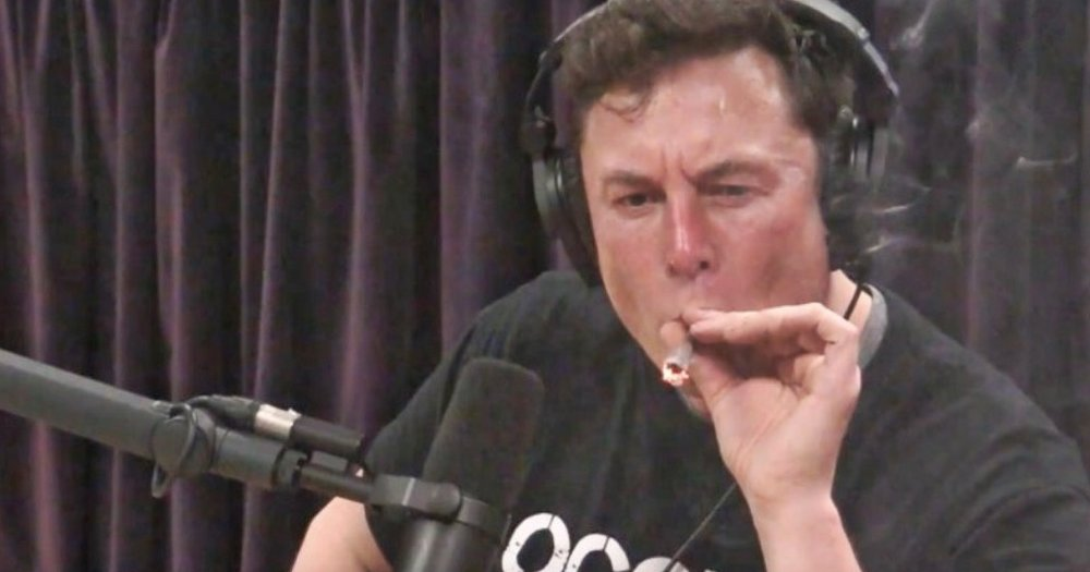 musk_smoking_weed-01.jpeg