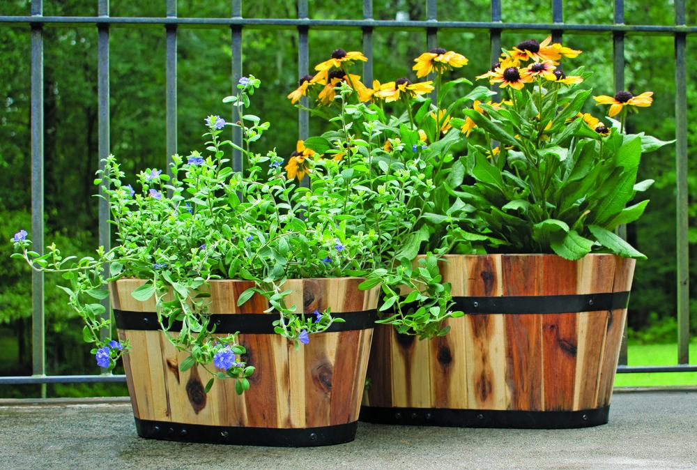 "oval acacia planters dimensions: 20.5""x12.5"""
