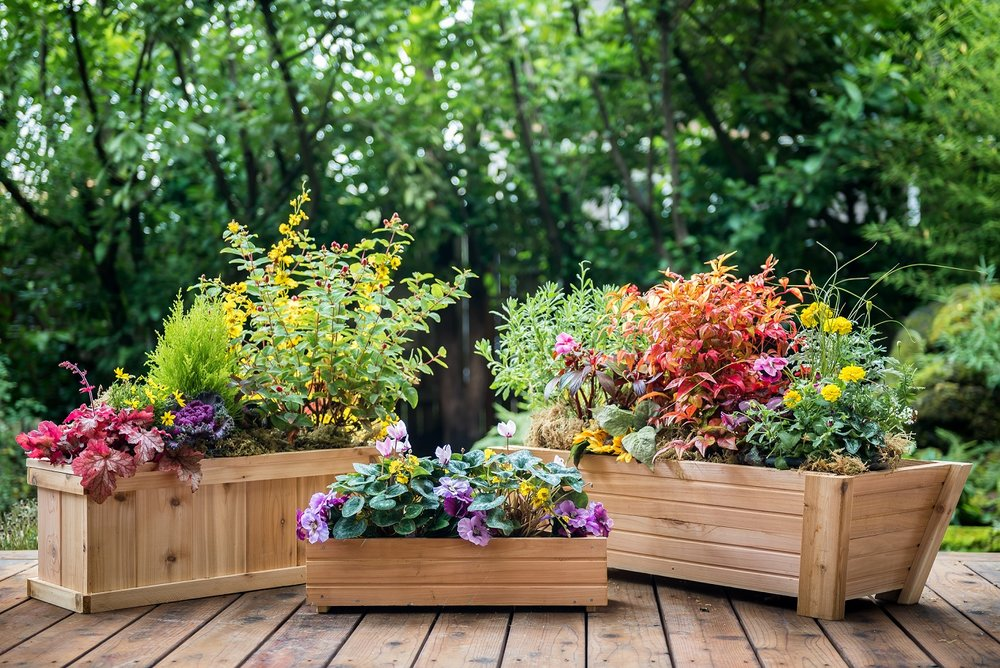 <strong>Cedar Planters</strong><p>See More »</p>