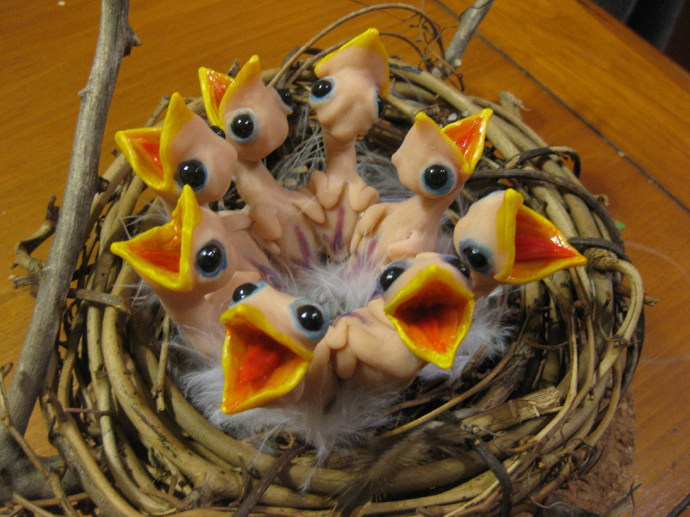 """Baby Birds in Nest"""