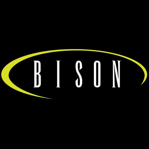 Bison Designs