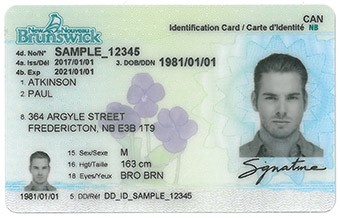 New Brunswick License.jpeg