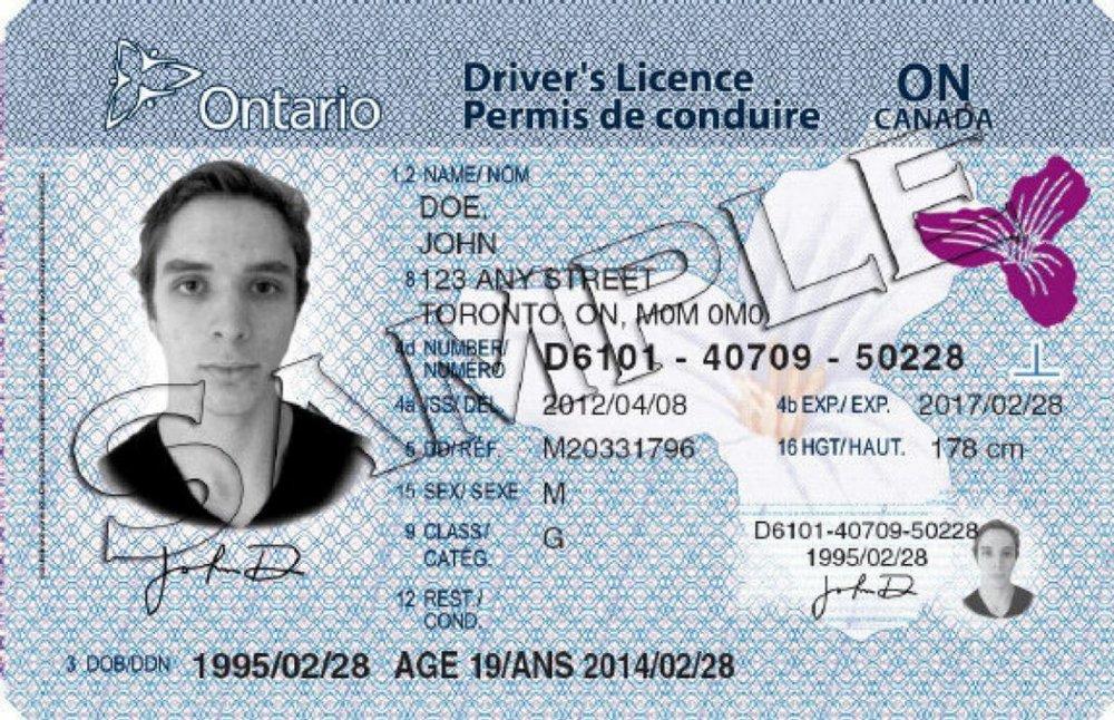 Ontario License.jpg