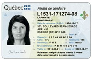 Quebec License.jpg