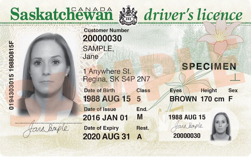 Saskatchewan License.jpg