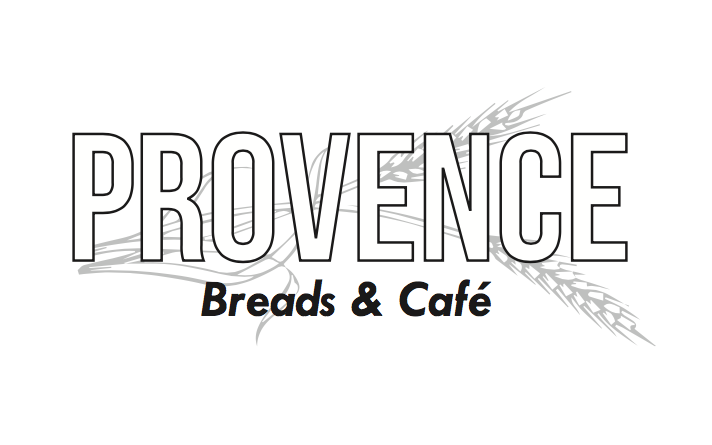 Logo Concept 1 -