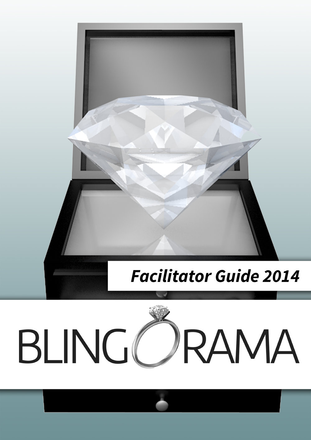 blingorama_facilitator_coverpage_A.jpg