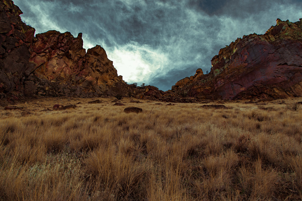 landscape_site_001.jpg