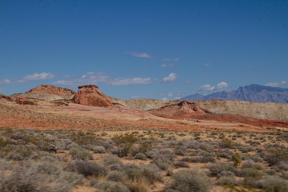 landscape_site_007.jpg