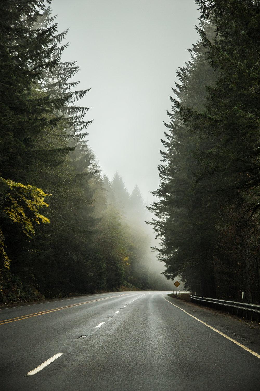 Portland_day3_025.jpg