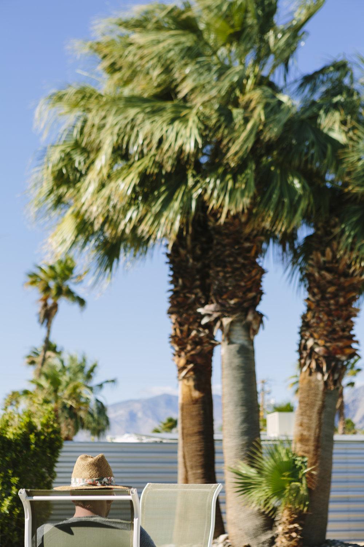 palmsprangs_001.jpg