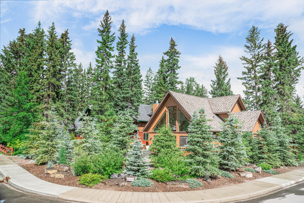 A front yard featuring bark nuggets, trees and shrubs in the Calgary and Banff area