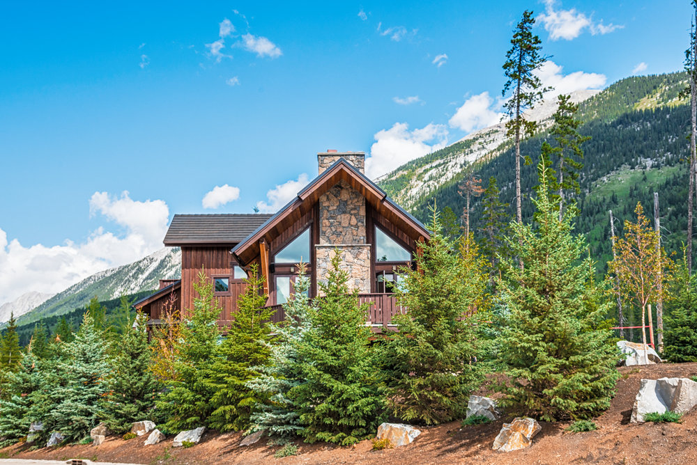 A house with a yard featuring White Spruce, Colorado Spruce and Birch trees in the Calgary and Banff area