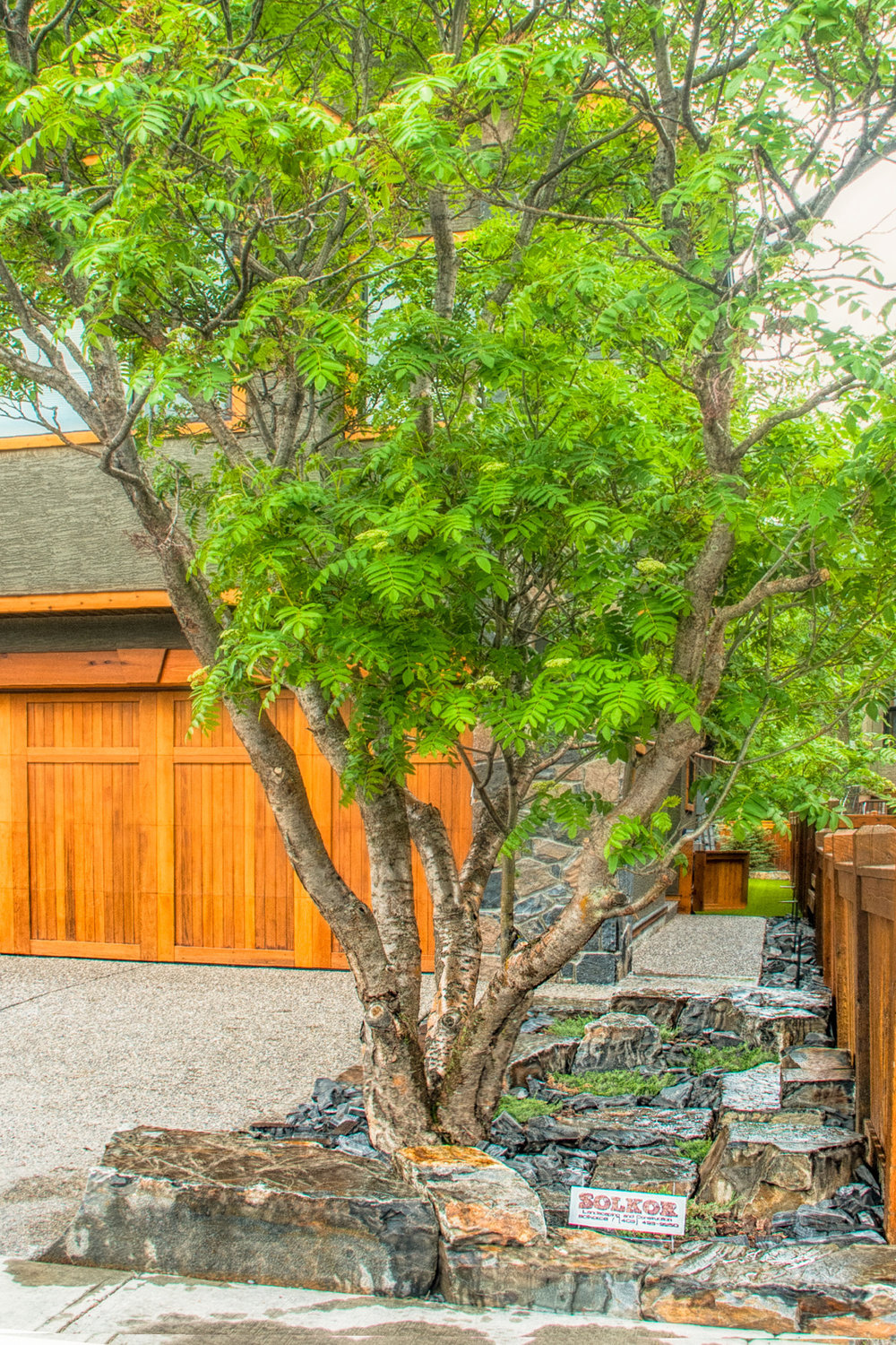 A backyard featuring maintenance-free stoneworks and a tree install in the Calgary and Banff area