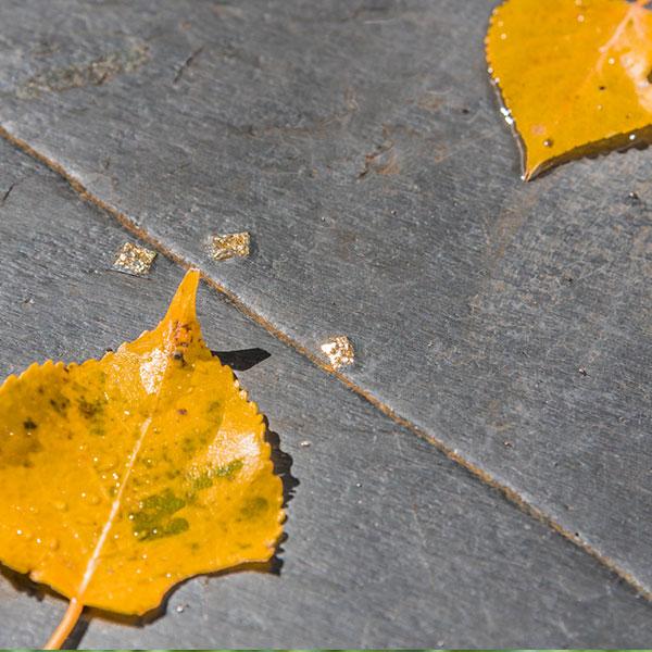 An orange leaf on a black wooden surface