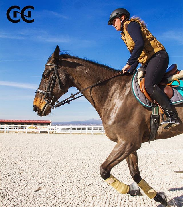 Nuestra profesora @judithsaques  #salto y #doma #cnc #hipica #caballos