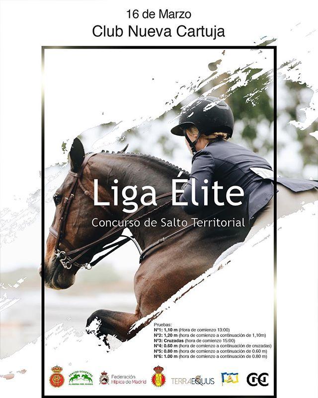 Dia 16 Liga Élite en el CNC! Para más información 609205544 (Ricardo) 🐎  #cnc  #horse #caballo #salto #showjumping