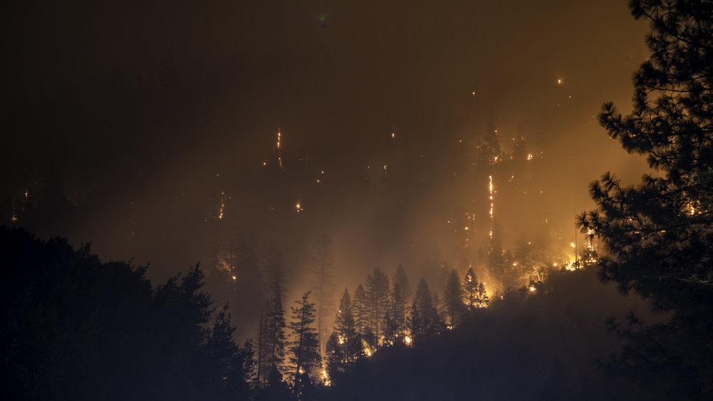 Waldbrände zu riskieren? -