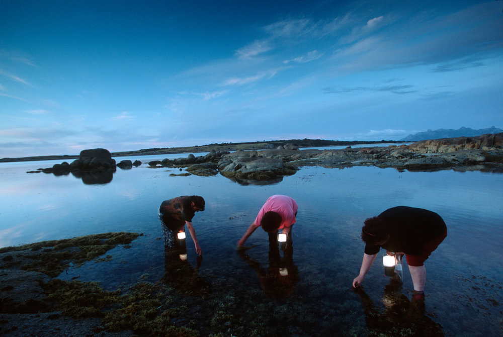 With handheld lamps atdusk, aboriginal artist Lola Greeno and two of her friends collect tiny seashells for traditional aboriginal necklaces.  Cape Barren Island