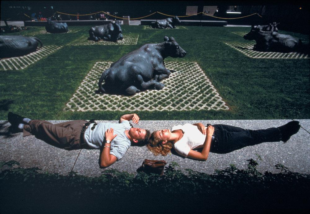 Taking it easy alongside bronze bovines, sunbathers snooze near Bay Street, Toronto's Wall Street equivalent.