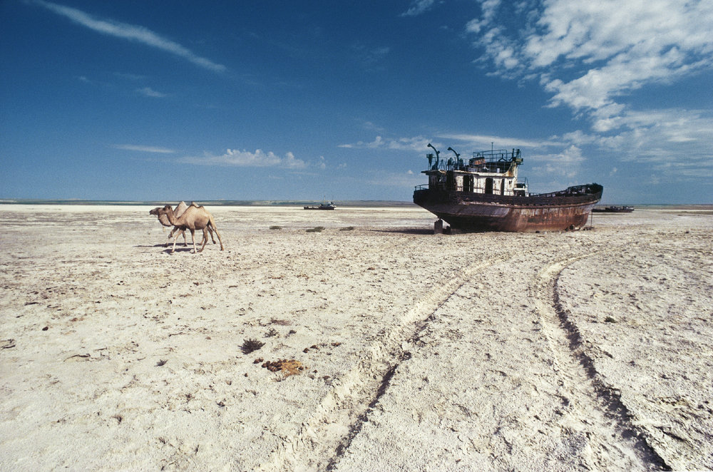 Sea Floor, Aral Sea, Kazakhstan 1993