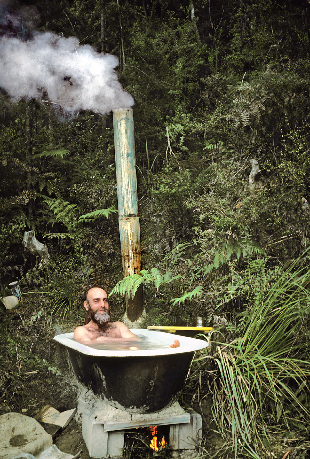 Hundertwasser: Jungle Bath, New Zealand 1978