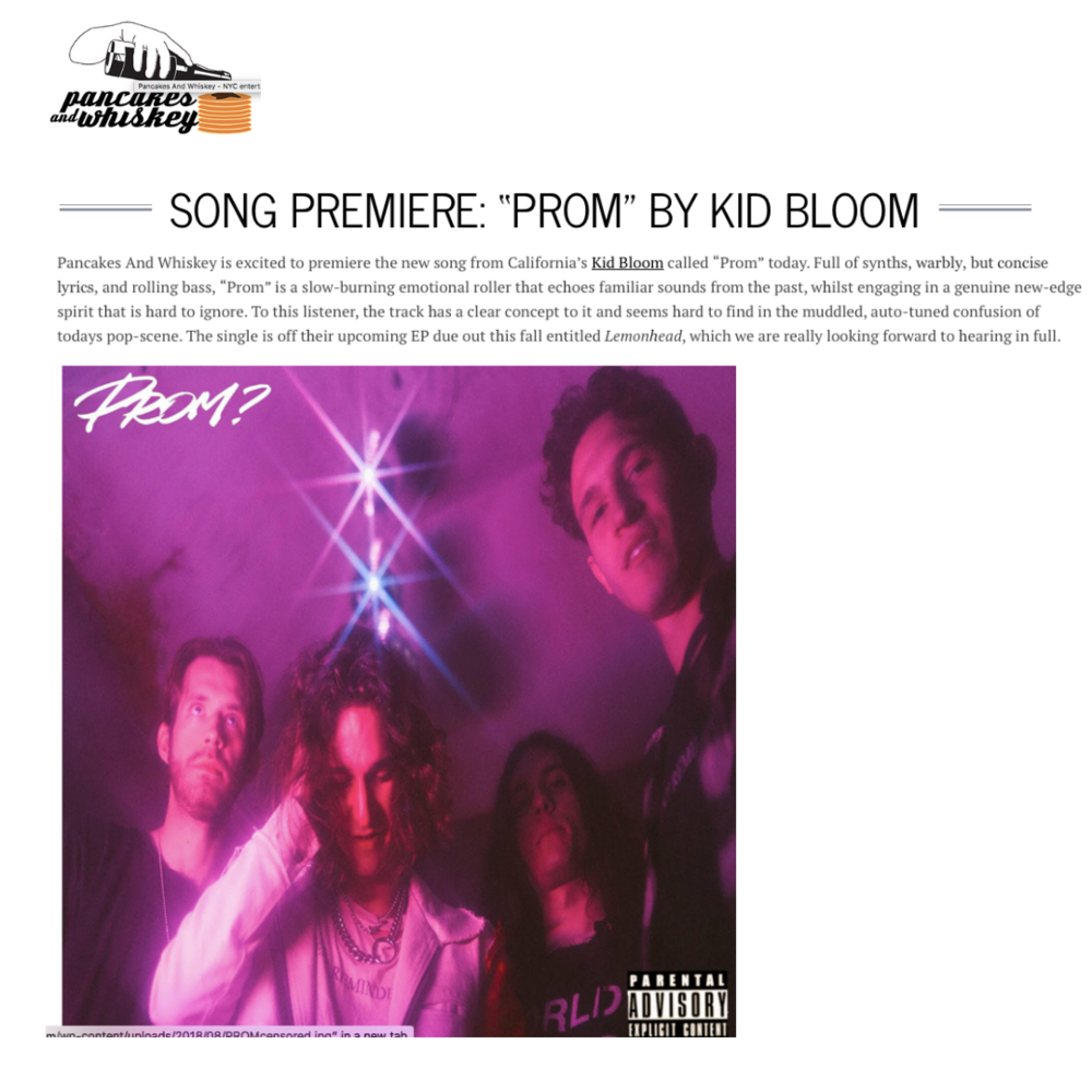 """Full of synths, warbly, but concise lyrics, and rolling bass, ""Prom"" is a slow-burning emotional roller that echoes familiar sounds from the past, whilst engaging in a genuine new-edge spirit that is hard to ignore"" -"