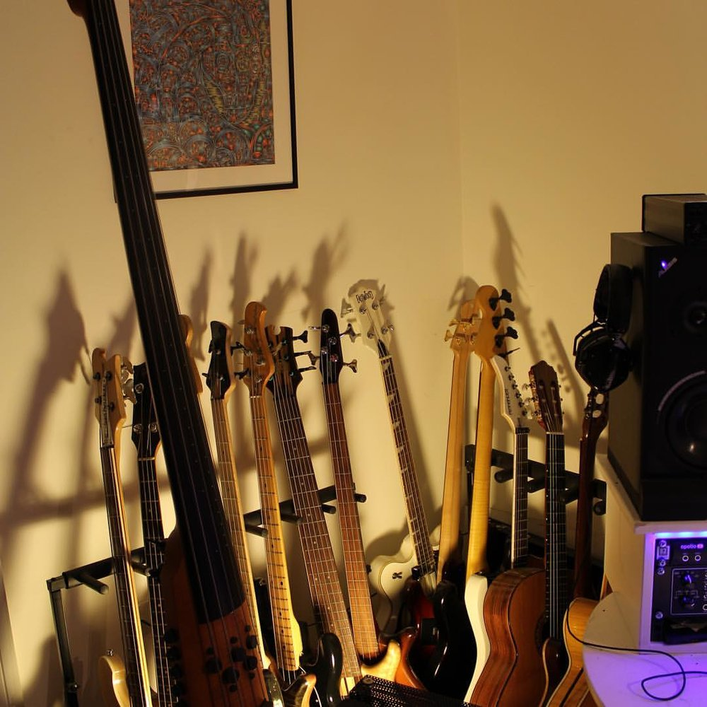 Dan's impressive bass guitar collection including upright bass!
