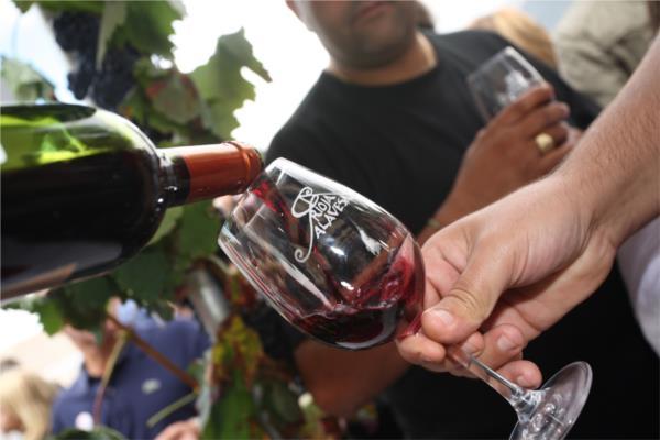 la-fiesta-de-la-vendimia-en-elciego-vino-de-la-rioja-alavesa-y-musica-6496-1.jpg