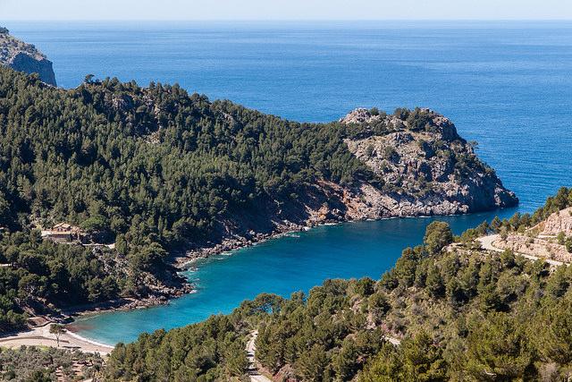Mallorca_EscorcaPuigMajor_mindgrow.jpg
