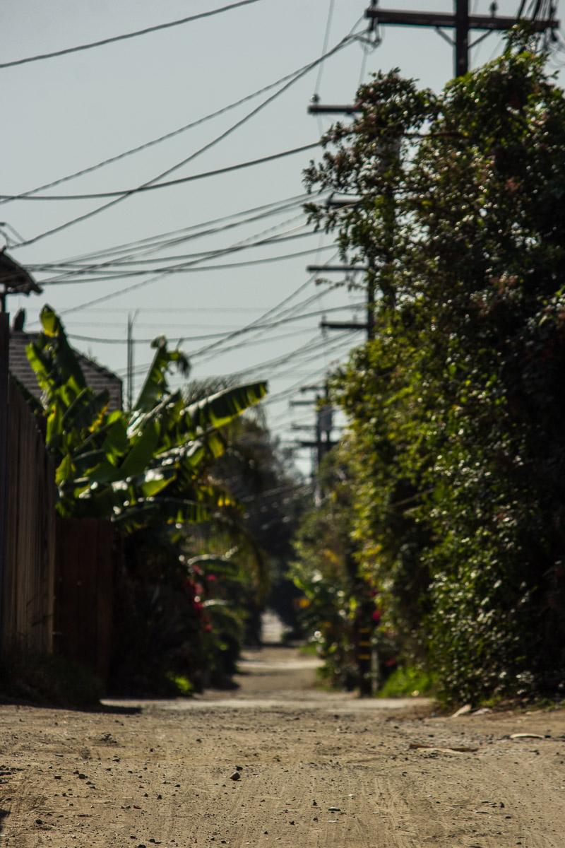 An alley near Mission Beach in San Diego.