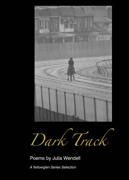 book-dark-track-julia-wendell-author-writer-equestrian-horses.jpg