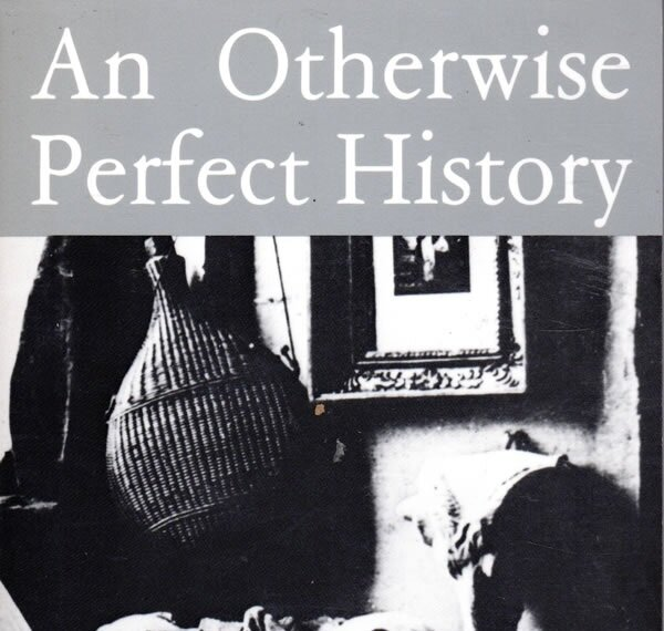 book-otherwise-perfect-history-julia-wendell-poet-author.jpg