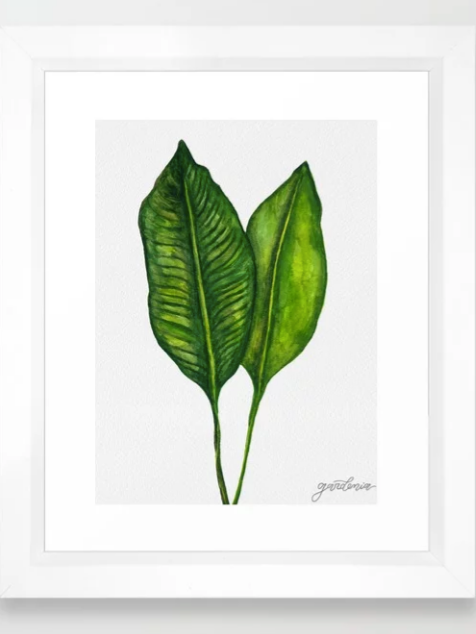 Tropical Collection part 1 Framed Art Print