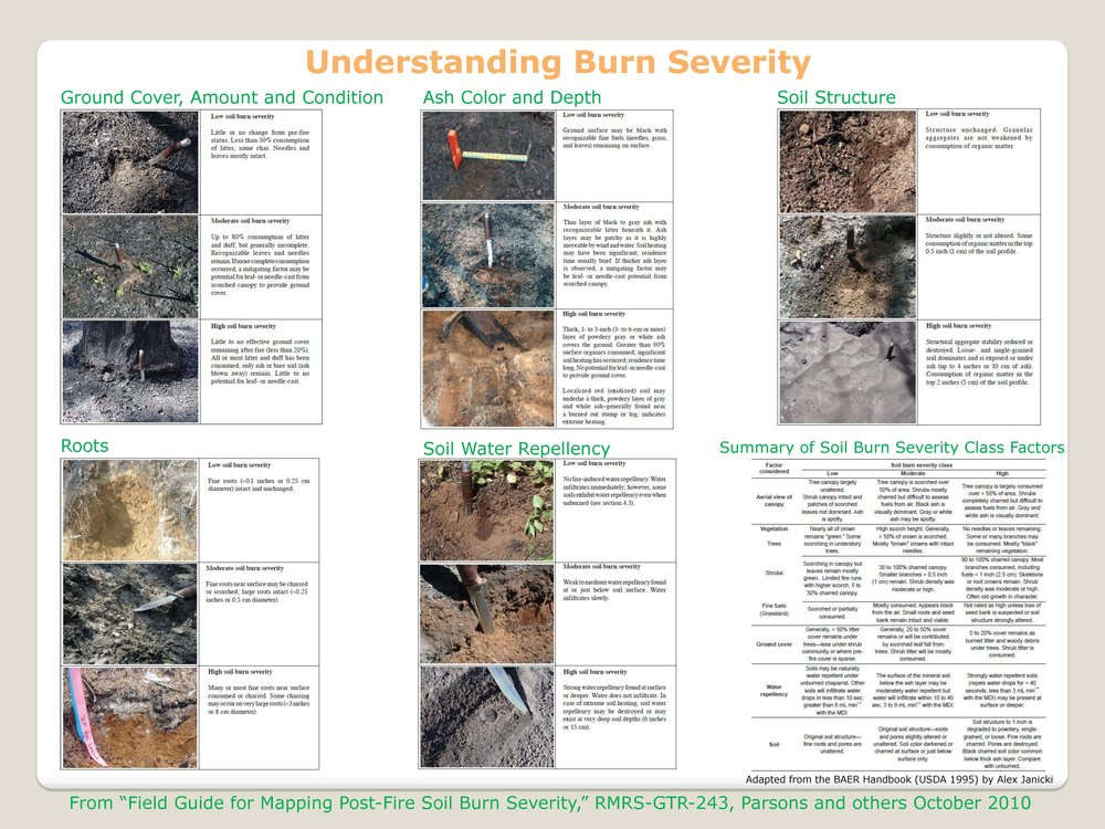 Click on the picture to download Understanding Burn Severity