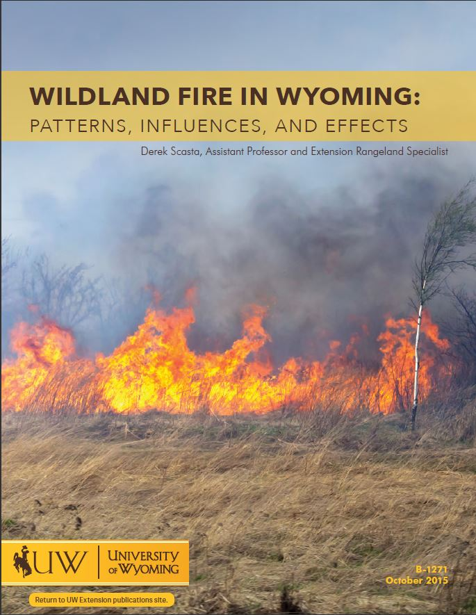 Wildland Fire In WY_Cover.JPG